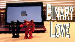 Binary Love Video